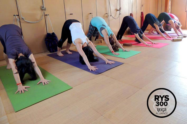 about-beginners-yoga