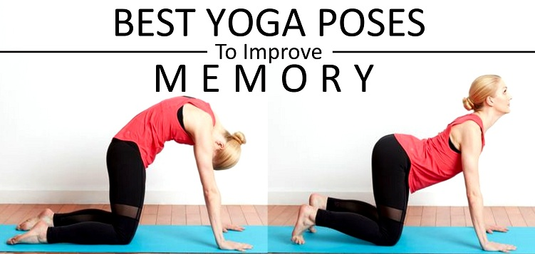 Best Yoga Poses to Improve Your Memory